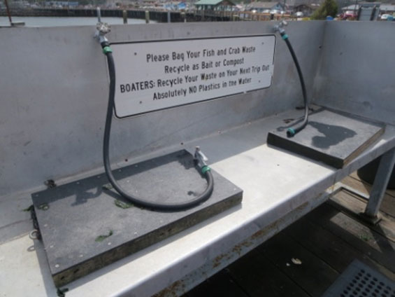 Fish Cleaning station in Bandon